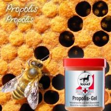 Leovet Propolis Gel - Honing Wondgel